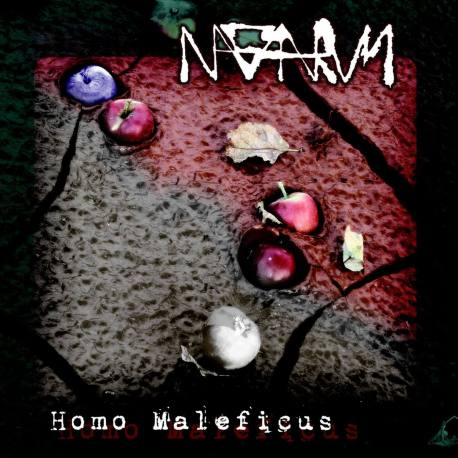 NAGAARUM Homo Maleficus - black metal expérimental