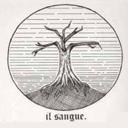 "IL SANGUE ""Elegia 4 : in still desolation"" Vinyl LP"